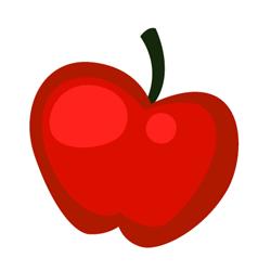icone5